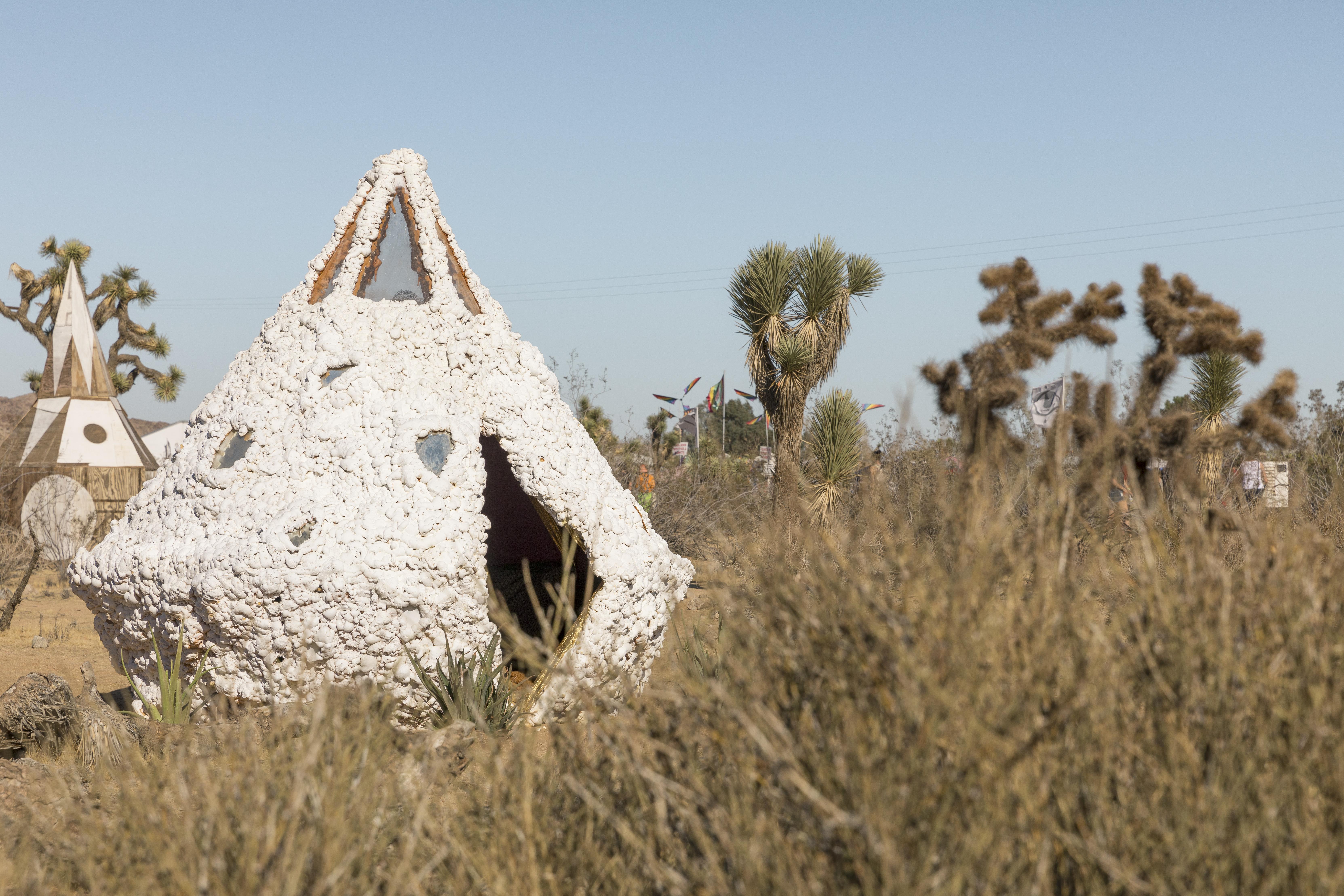 Desert Daze - Lance Gerber 13.jpg