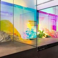 Frida Escobedo arquitecta mexicana realizará el Pabellón Serpentine en Londres